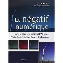 Le négatif numérique: Développer ses fichiers RAW avec Photoshop, Camera RAW et Lightroom.