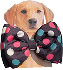 Dog Bow Tie by Lana, Quirky & Cool Dog Fashion Accessory with Easy to use Adjustable Strap - Polka Dots