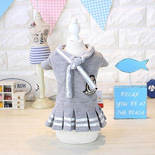 Winter Hund Kleidung College Faltenrock College Wind schönes Kleid Teddybären (Große Halloween-college-kostüme)