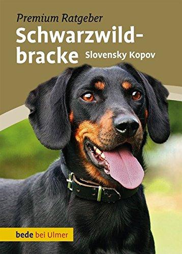 Schwarzwildbracke: Slovensky Kopov