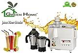 GTC Green Home Juicer Mixer Grinder 550W...