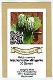 Mexikanische Minigurke - Melothria scabra - sehr ertragreich - 30 Samen