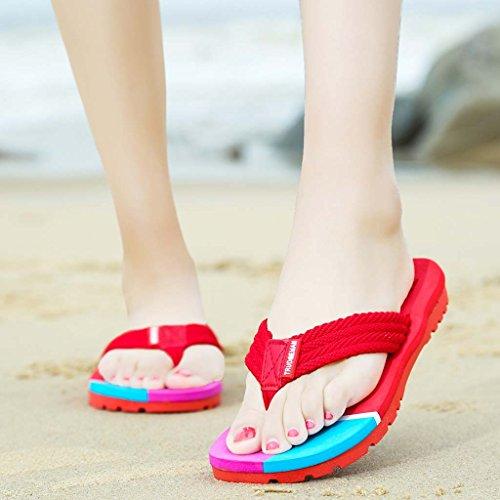 delle allaperto della red coppie spiaggia Scarpe delle e Rose maschii pantofole ZXCV femminili allaperto Pattini pT1caq