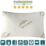EvergreenWeb–Par de almohadas con relleno de látex natural y...