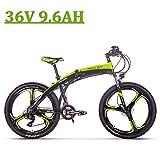 RICH BIT Vélo Électrique Pliant, RLH-880, 250W 36V 9.6AH, Freins à Disque hydrauliques ebike,Noir-Vert