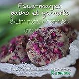 Faux-mages pains et yaourts et autres recettes lactofermentées crues et végétales