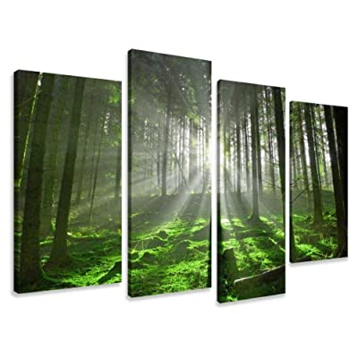 "Picture - art on canvas nature length 51"" height 31,5"", four-part parts model no. XXL 6130 Pictures completely framed on large frame. Art print Images realised as wall picture on real wooden framework. A canvas picture is much less expensive than an oil p"