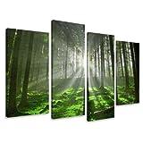 Bild & Kunstdruck der deutschen Marke Visario 130 x 80 cm 6130 Bilder auf Leinwand Kunstdrucke Wald Bäume Lichtung Wandbild