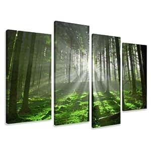 visario leinwandbilder 6130 bilder auf leinwand natur 130 x 80 cm. Black Bedroom Furniture Sets. Home Design Ideas