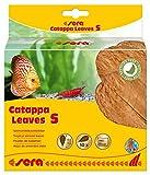 sera 32273 Catappa Leaves Seemandelbaumblätter für die natürliche Wasseraufbereitung, 14 cm, 10 Stück, S