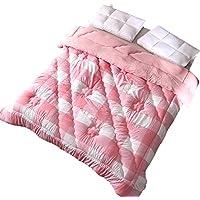 JIJIHAO beizi Quilt Double Individual Winter Verdickung Warmhaltebettwäsche (größe : 150 * 200cm(2.25kg))