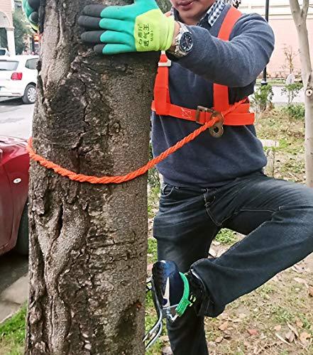TREES Kletterbaum mit Spikes für den Außenbereich, Baumsteigeisen Kletterhilfen Forstzubehör,Einfach Zu Bedienen,B+Seatbelt