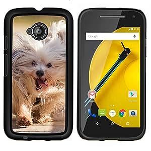 EJOOY---Protection de la peau dur pour couvrir les cas ** Motorola Moto E2 E2nd Gen ** --Husky sibérien Chien luge Polar Komandor