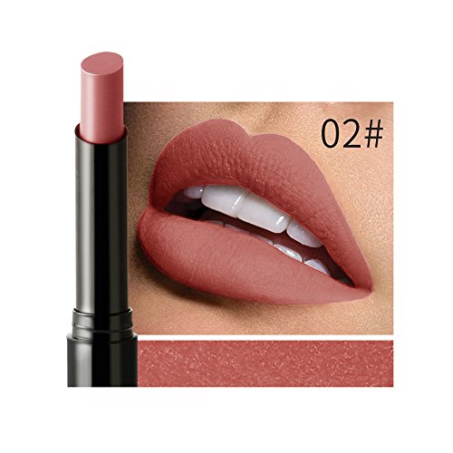 Lipstick EUZeo Matte Waterproof Long-lasting Lip Liner Stick Pencil 12 Colour (B)
