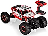 Top Race Télécommande RC Voitures cool Rock Crawler / Monster Truck 4WD / Off Road Vehicle Toy 2,4 GHz Batteries. TR-130R