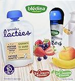 Blédina Gourdes Lactées Fruits Rouges/Pomme Banane de 10 à 36 mois 4 x 90 g - Pack de 6