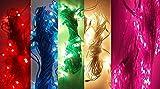 #1: Generic 4 Rice Light Serial String Bulbs (Ladi) Decoration Lighting for Christmas XMAS (Random Colors)
