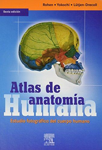 Atlas de anatomia humana. estudio fotografico del cuerpo humano. (6ªed por Rohen