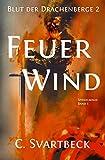 Feuerwind: Blut der Drachenberge 2 (Spiegelmagie 5)