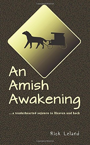 an-amish-awakening-a-tenderhearted-sojourn-to-heaven-and-back