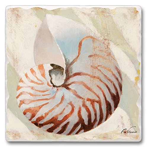Nautilus Shell Reef de cuisine salle à manger absorbant Pierre Dessous de Plat