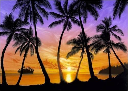 poster-100-x-70-cm-palm-beach-sundown-de-andrew-farley-mgl-licensing-impresion-artistica-de-alta-cal