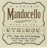 D\'Addario Cordes en bronze phosphoreux pour mandoloncelle D\'Addario J78, 22-74