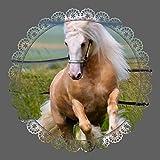 Tortenaufleger Pferd Festlich 02