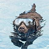 Homesupplier Hund Brillen Sonnenbrille Wasserdicht Winddicht UV-Schutz für mittlere Große Hunde Gläser–Tierarzt empfohlen Eye Schutz (schwarz)