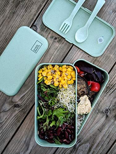 avoid waste Nachhaltige Lunchbox ♻ Die Premium Aufbewahrungsbox mit Deckel und Besteck im Bento-Box Stil mit Zwei Fächern. Biologisch abbaubar, plastikfrei, BPA frei, auslaufsicher - 6