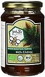 Organic Honey Fasilis Bio Tannenbaum Honig im Glas, 450 g