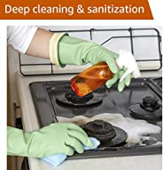 Deep Cleaning and Disinfection Services