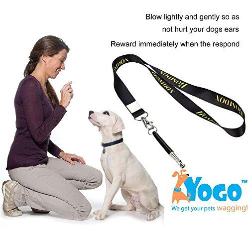 Homdox 3074 Hundepfeife schwarz mit Pfeifenband 9 CM