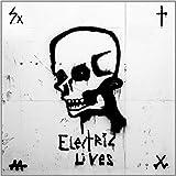 Songtexte von Go Go Berlin - Electric Lives
