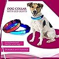 Xiaokesong® Visio Light LED Leuchthalsband für Hunde