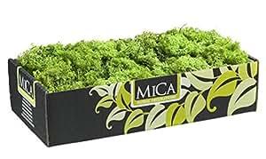 Mousse naturelle verte pour composition florale - 500 gr