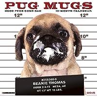Pug Mugs 2017 Calendar: Good Pugs Gone Bad
