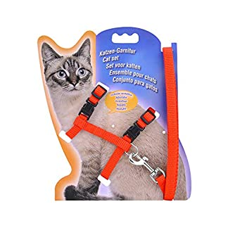 adjustable cat harness nylon cat puppy lead and leash for kittens small animals cats walking black blue red pink Adjustable Cat Harness Nylon Cat Puppy Lead and Leash for Kittens Small Animals Cats Walking Black Blue Red Pink 51VvLvoNgGL
