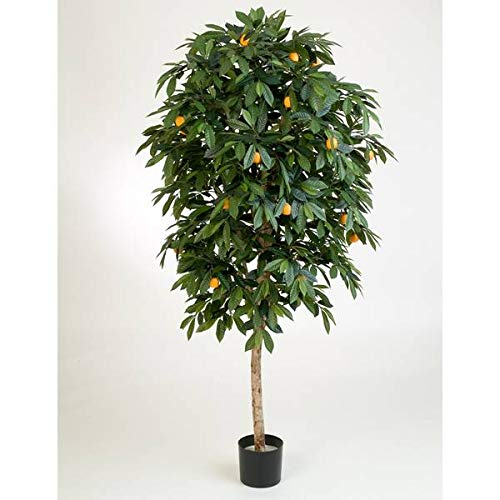 artplants.de Set \'Kunstbaum Orangenbaum und UV Schutz Spray\' - Kunst Orangenbaum Celia, Echtstamm, mit Früchten, grün, 170cm