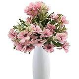 Live with Love 2 ramos de flores cosmos con 1 jarrón de cerámica blanca perfecto...