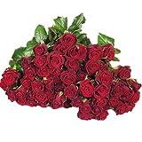 100 Rosen - 100 rote Rosen - Frische Rosen, vasenfertig bearbeitet!
