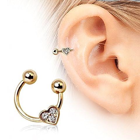 Cœur en fer à cheval cartilage Boucles d'oreilles en acier chirurgical 316L