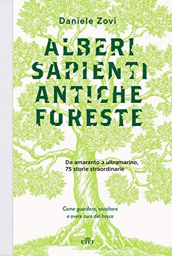 Alberi sapienti, antiche foreste: Come