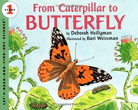 From Caterpillar to Butterfly (Let's-Read-and-Find-Out Science, Stage 1) by Heiligman, Deborah (1996) Paperback