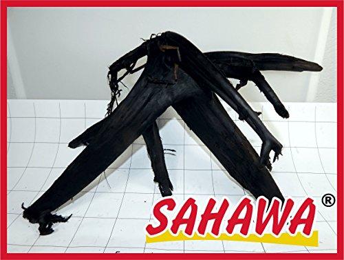 Sahawa® Moorwurzel Größe 2 25 - 30 cm, Moorkienwurzel,rote Moorwurzel, Moorkienholz, Garnelenbaum