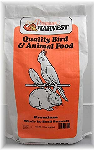 Autumn Food Chuckanut Seawest Premium Harvest Raw In shell Peanuts High Fat 10 lb