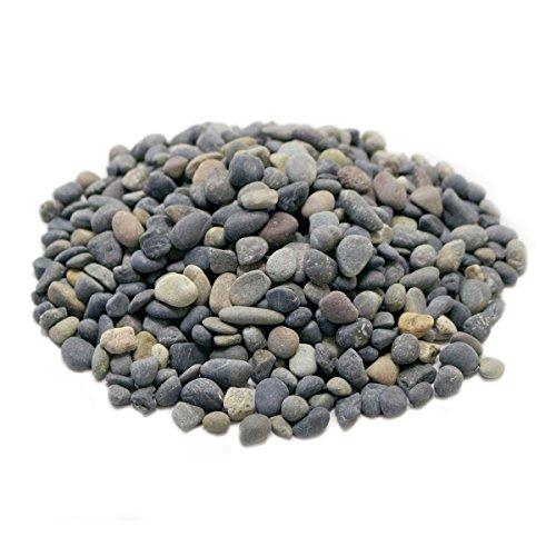 LYTIO Dekorativer Pebble Rocks Unterschiedlichen Formen und Größen aus Mexiko 's Finest Strände, 100% Organic ungiftig Dekorieren Sie Ihr Zuhause, Garten, Büro, Teich, Töpfe, 5LB Gemischt - Gas-kamin Kieselsteine