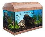 Aquarium Komplett Set 40cm in Buche mit gerader Frontscheibe