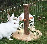 Kerbl Futterbaum für Kaninchen