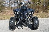 Kinder Quad Warriorer (Benzin 125ccm) - 6